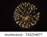 fireworks | Shutterstock . vector #733254877