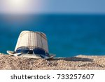 men's sunhat with sunglasses on ... | Shutterstock . vector #733257607