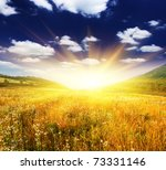 beautiful sunset over field... | Shutterstock . vector #73331146