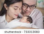 asian parents with newborn baby ... | Shutterstock . vector #733313083