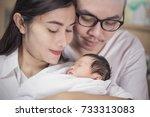 asian parents with newborn baby ... | Shutterstock . vector #733313083