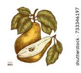 colored pear fruit illustration.... | Shutterstock .eps vector #733346197