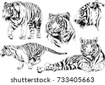 set of vector drawings on the... | Shutterstock .eps vector #733405663