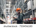 wholesale  logistic  people and ... | Shutterstock . vector #733456183