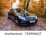 chisinau  moldova  october 11 ... | Shutterstock . vector #733504627