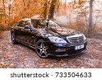 chisinau  moldova  october 11 ... | Shutterstock . vector #733504633