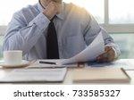 businessman working reading... | Shutterstock . vector #733585327