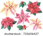Christmas Set Of Flowers...