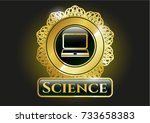 shiny emblem with laptop icon... | Shutterstock .eps vector #733658383