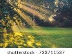 morning urban landscape. sun... | Shutterstock . vector #733711537