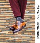 male feet in beautiful shoes... | Shutterstock . vector #733757167
