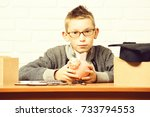 young cute pupil boy in grey... | Shutterstock . vector #733794553