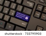 general data protection... | Shutterstock . vector #733795903