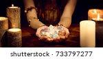 female fortune teller holding... | Shutterstock . vector #733797277