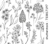 vector floral pattern  flowers... | Shutterstock .eps vector #733817197