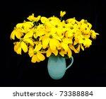 vase with green headed... | Shutterstock . vector #73388884