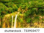tamarind falls or tamarin falls ... | Shutterstock . vector #733903477