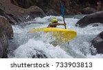 kayaking in india | Shutterstock . vector #733903813
