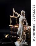 legal code  enforcement of the... | Shutterstock . vector #733923733