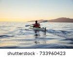 woman on a sea kayak is... | Shutterstock . vector #733960423