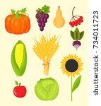 vector harvest flat icons... | Shutterstock .eps vector #734011723
