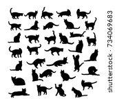 cat silhouette | Shutterstock .eps vector #734069683