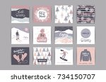 set of artistic creative winter ... | Shutterstock .eps vector #734150707