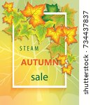 vertical banner for the steam... | Shutterstock . vector #734437837