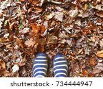 welly boots in the leaves. | Shutterstock . vector #734444947