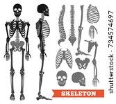 human anatomy flat monochrome... | Shutterstock . vector #734574697