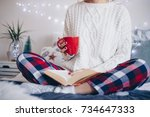 lazy holiday mornings | Shutterstock . vector #734647333