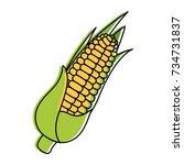 corn fresh vegetable icon | Shutterstock .eps vector #734731837