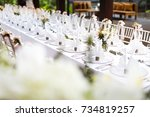 dinner set up | Shutterstock . vector #734819257