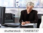 mature businesswoman writing to ... | Shutterstock . vector #734858737