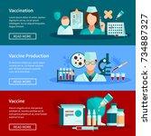 vaccination flat horizontal... | Shutterstock . vector #734887327