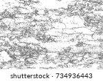 distressed halftone grunge... | Shutterstock .eps vector #734936443