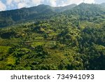 terrace rice fields near... | Shutterstock . vector #734941093