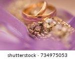 wedding rings.   Shutterstock . vector #734975053