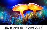 Mushroom. Fantasy Glowing...