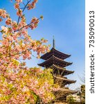 Five Storied Pagoda And Cherry...