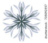 a symbolic snowflake. element... | Shutterstock .eps vector #735092557