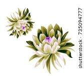 Stock vector  vector lotus flower illustrations isolated on white detailed vector botanical illustration 735094777