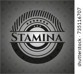 stamina dark badge | Shutterstock .eps vector #735116707