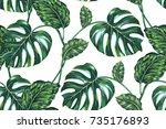 tropical leaves  jungle leaf ... | Shutterstock .eps vector #735176893
