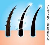 hair care   prevent split ends... | Shutterstock .eps vector #735223747