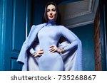 beautiful sexy woman brunette... | Shutterstock . vector #735268867