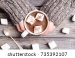 Hot Chocolate With Marshmallow...