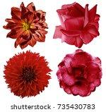 set red flowers. bright ... | Shutterstock . vector #735430783