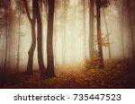 autumn landscape  trees in...   Shutterstock . vector #735447523