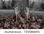 skeleton arms reaching out from ... | Shutterstock . vector #735580693